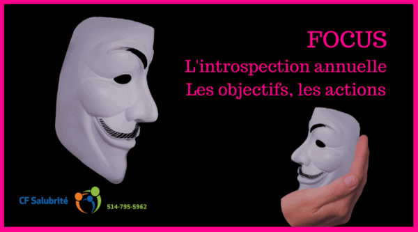 L'introspection annuellle